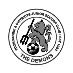 toongabbie and districts junior soccer club logo